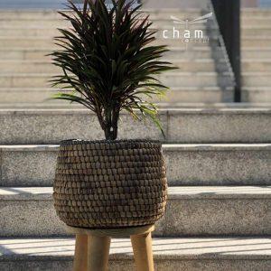 chậu lục bình đồ trang trí decor đồ thủ công mỹ nghệ CLB03 1